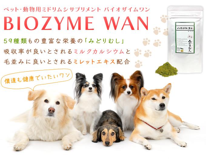 ペット・動物用ミドリムシサプリメント バイオザイムワン